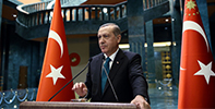 Erdoğan and the Coalition Government