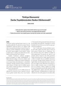 Türkiye Ekonomisi Darbe Teşebbüsünden Neden Etkilenmedi?