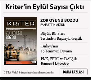 Insight Turkey